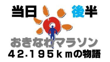【おきなわマラソン④】中間点~ゴールへ!沖縄で初めてのフルマラソンにチャレンジした旅ランブログ~42.195kmの物語~(大会当日・後半の章)