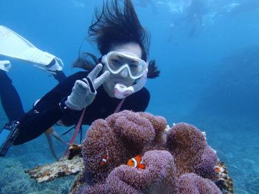 沖縄でシュノーケリング・ダイビング|ショップやツアーの選び方5つのポイント!|お得なクーポン情報も【体験して分かったことまとめ】