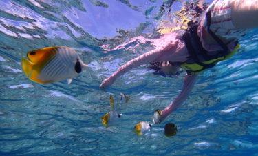 沖縄でシュノーケル・ダイビング|おすすめ・インスタ映えはどっち?費用や楽しさの違いを徹底比較|お得なクーポンまとめ【実体験の画像で解説】