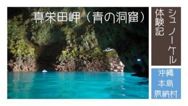真栄田岬(青の洞窟)シュノーケル体験記・ツアー予約のポイント・見られた魚|沖縄本島 恩納村|旅行記ブログ
