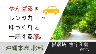 沖縄本島 北部|やんばるをレンタカーで移動しながら一日をゆっくり過ごしてみた旅ブログ。(瀬良垣ハイアット|恩納村発着)